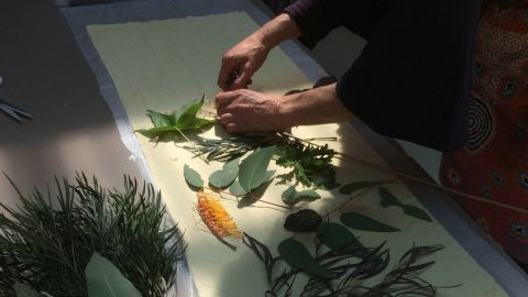 Photo of natural materials used for print making